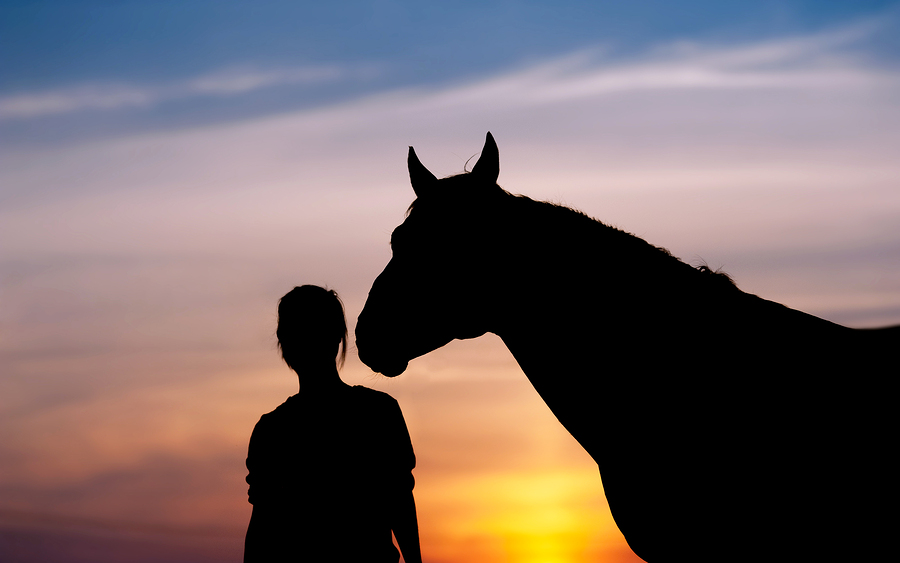 The girl near to a horse standing in front of a beautiful sunset. Silhouette of a woman and a horse's head.